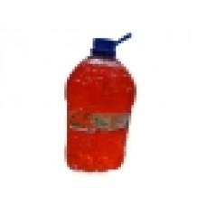 Мыло туалетное жидкое с экстрактом облепихи, рябины 5 л (МАРТА) (4810321003712)